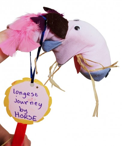 """Longest Journey by a Horse by Zoe Cain.""