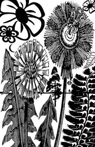 Paul Morrison - Pollinia