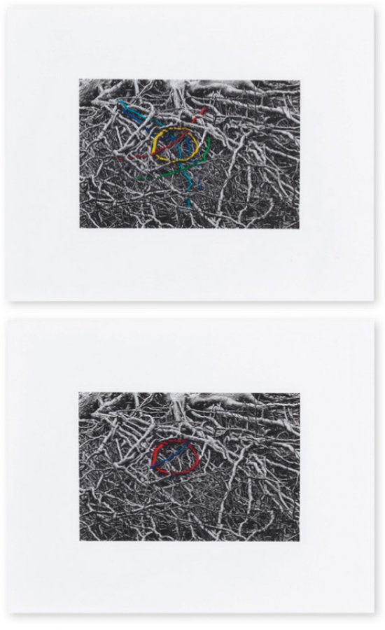 Runa Islam, Tube Map 1 and Tube Map 2, 2013. Hand-tinted Silver Gelatin print on Fibre paper