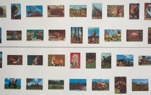Alan Kane, The Stratford Hoard: Martin Kingdom, Picture Postcards (2008). Photograph: Daisy Hutchison