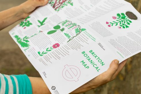 Brixton Botanical Map, 2021. Photo: Benedict Johnson, 2021